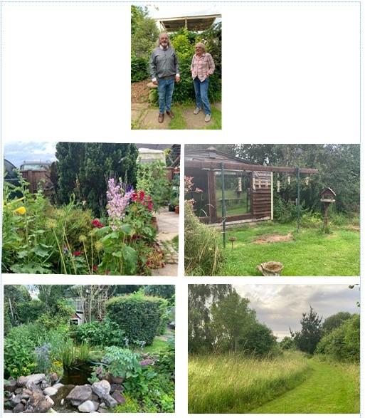 Wildlife garden (2)